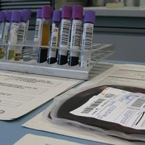 Donación pública de la sangre de cordón